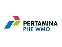 petramina3